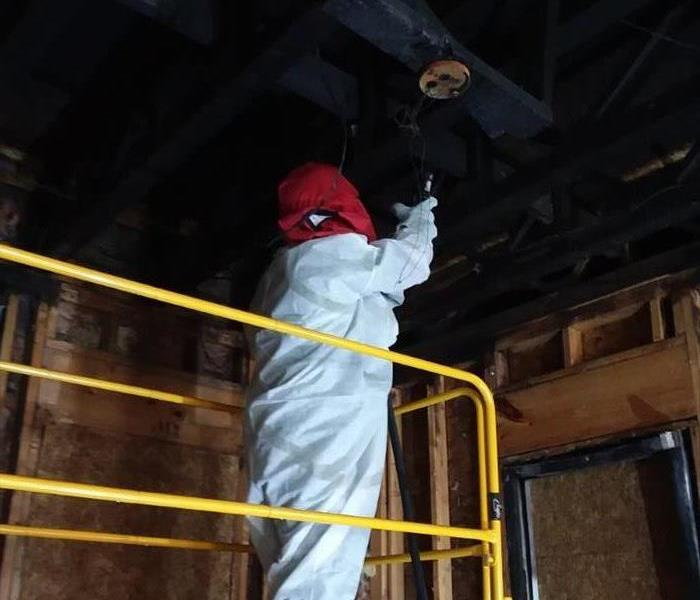 Mold Remediation Quick Response  After