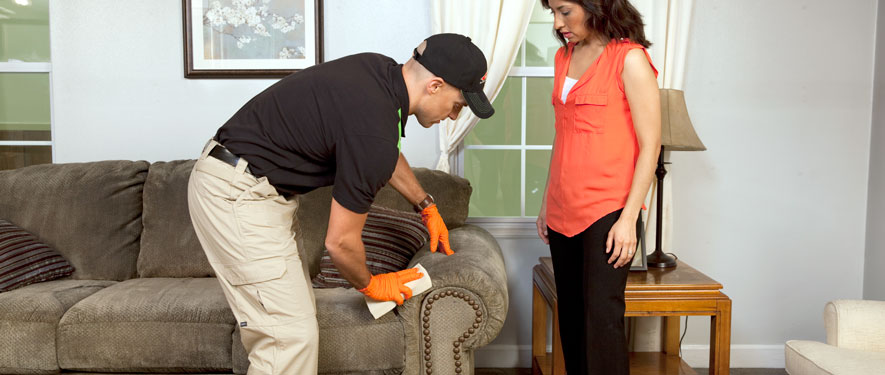 Fayetteville, NC carpet upholstery cleaning
